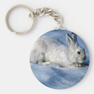 Varying Hare Snowshoe Rabbit on open snow Key Chains