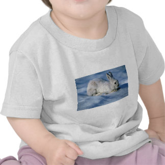 Varying Hare/Snowshoe Rabbit on open snow T Shirts