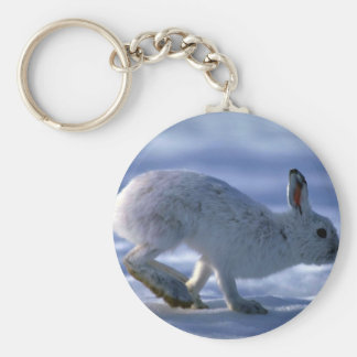 Varying Hare Snowshoe Rabbit running across open s Key Chains