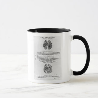 Vascular system of the brain mug