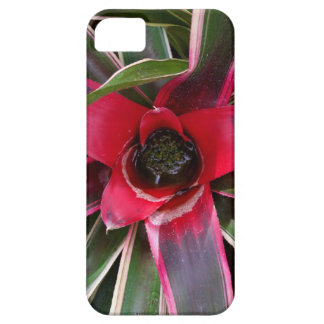 Vase Plant Case-Mate iPhone 5 Barely There Univers