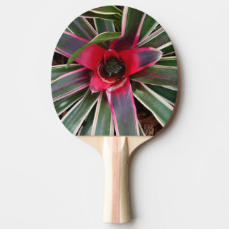 Vase Plant Ping Pong Paddle