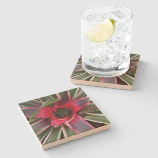 Vase Plant Stone Coaster