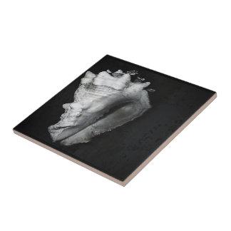 Vase Shell Tile