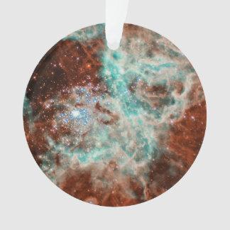 Vast Star-Forming Region 30 Doradus