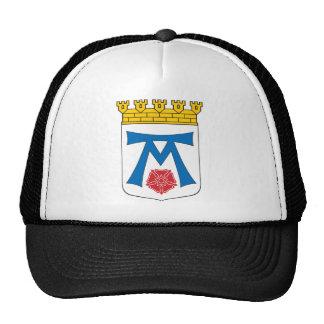 Vasteras Coat of Arms Trucker Hats