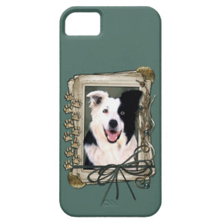 Vatertag - Steintatzen - Border-Collie iPhone SE/5/5s Case