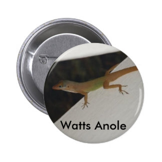 Vatios de Anole de botón del reptil Pin Redondo De 2 Pulgadas
