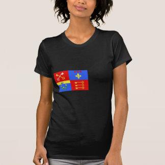 Vaucluse, France flag T-Shirt