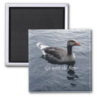 vaya con el imán del blanco del pato del flujo