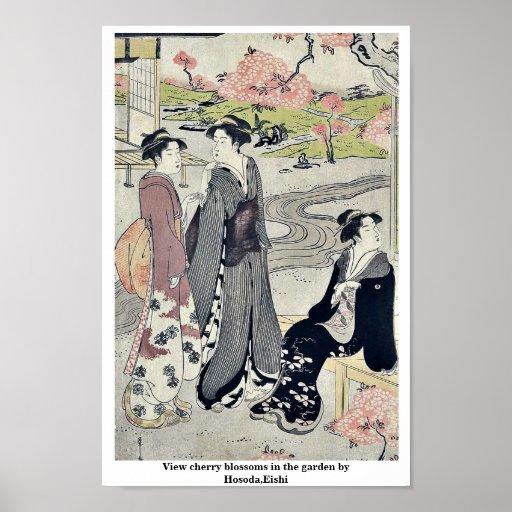 Vea las flores de cerezo en el jardín por Hosoda,  Póster