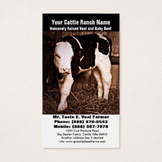 Veal Calf - Baby Holstein Cross Cow Business Card