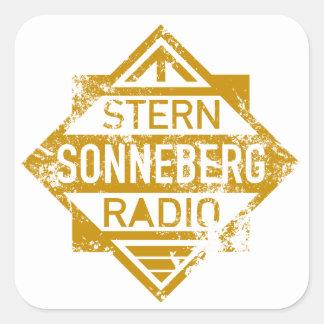 VEB Stern-Radio Sonneberg Stickers