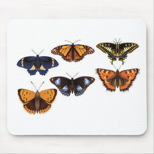 Vector de las mariposas mouse pad