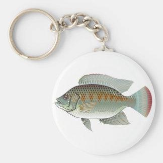 Vector de los pescados de la Tilapia de los Llavero Redondo Tipo Pin