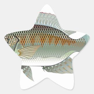 Vector de los pescados de la Tilapia de los Pegatina En Forma De Estrella