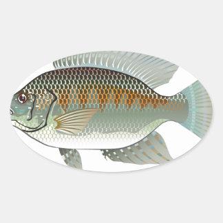 Vector de los pescados de la Tilapia de los Pegatina Ovalada