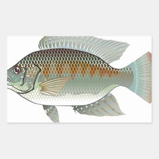 Vector de los pescados de la Tilapia de los Pegatina Rectangular