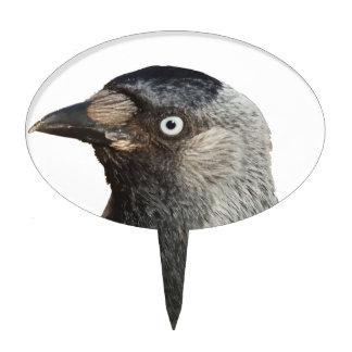 Vector del retrato del pájaro del grajo decoraciones para tartas