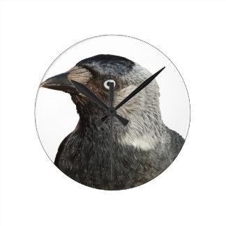 Vector del retrato del pájaro del grajo reloj redondo mediano