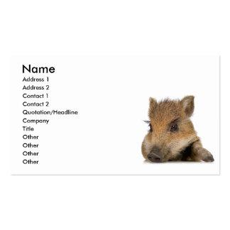 vector hinchado pote del cochinillo del cerdo tarjetas de visita
