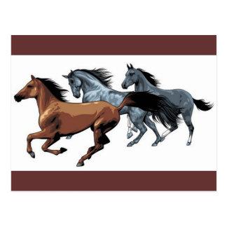 vectores de los caballos que corren negro gris mar postal