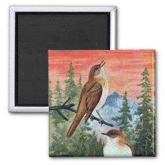 Veeries in a Coniferous Forest 2 Inch Square Magnet