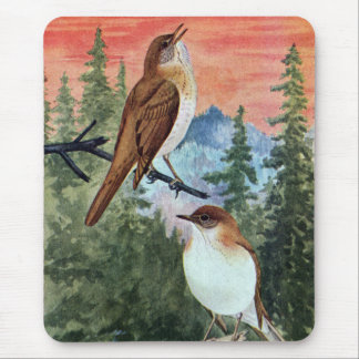 Veeries in a Coniferous Forest Mouse Pad