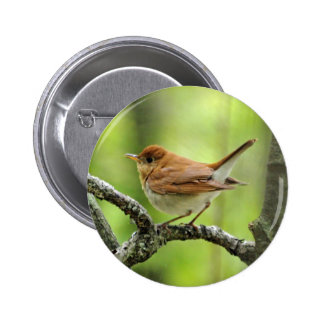Veery Button
