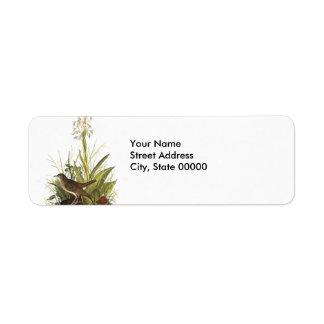 Veery, John Audubon Return Address Labels