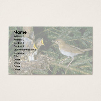 Veery with young business card