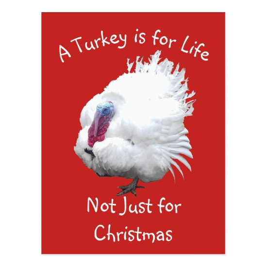 Vegan Christmas Turkey Postcard