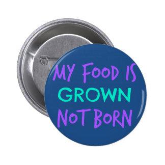 Vegan Food Pinback Button