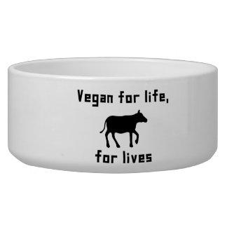 Vegan for life bowl