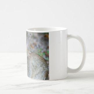 Vegan Serenity Bunny Coffee Mug