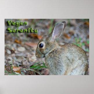 Vegan Serenity Bunny Poster