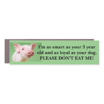 Vegan, vegetarian, animal rights, pig, environment car magnet