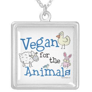 Vegano para el collar de los animales