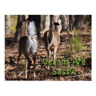 Vegans Are Sassy! Whitetail Deer Gifts & Apparel Postcard