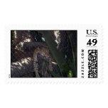 vegas 036 postage stamps