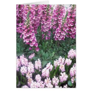 VEGAS Butterfly Garden Flowers LadyBug Greetings Card