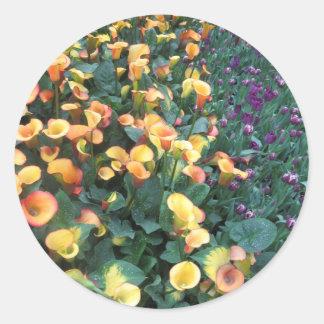 VEGAS Butterfly Garden Flowers LadyBug Greetings Classic Round Sticker