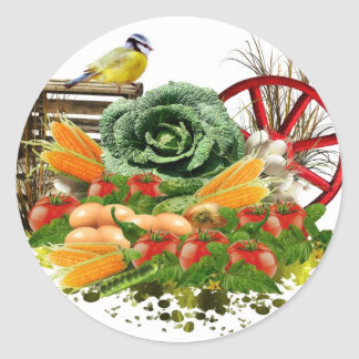 Vegetable and eggs classic round sticker