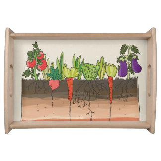 Vegetable garden soil earth layers coffee tray