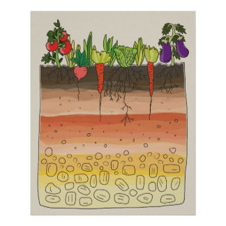 Vegetable garden soil earth layers kitchen decor posters