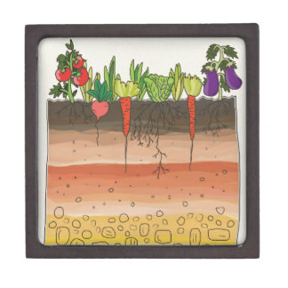 Vegetable garden soil earth layers nature art jewelry box