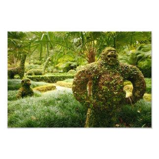 Vegetable gorilla photographic print