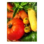 Vegetable Medley Post Cards