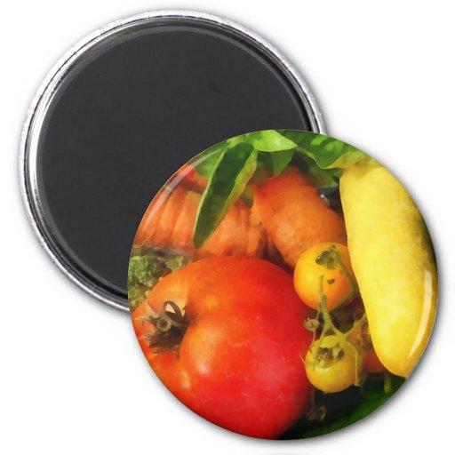 Vegetable Medley Refrigerator Magnets