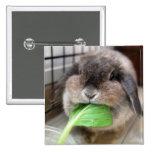 Vegetable munching (button)
